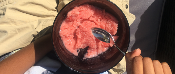 Strawberry Oatmilk Ice Cream